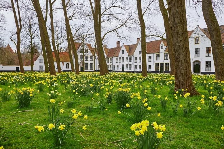 Uitstap Begijnhof Ten Wijngaerde in Brugge